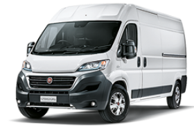 MTW_DUCATO.png.img.300